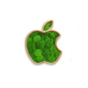 apple-moss-frame-greenwall