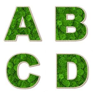 moss-alphabets