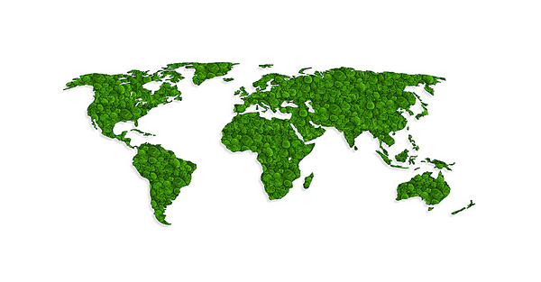 world-map-greenwall-frame