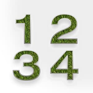 Moss_wall_number_Design