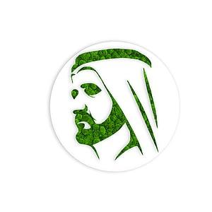 sheikh-mohammed-frame